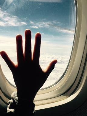 Volando de LA